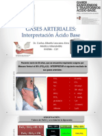 Interpretacion AGA