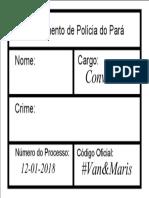 Placa 2