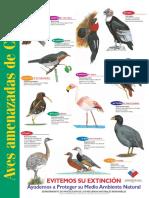 Afiche Aves Amenazadas de Chile - 2.pdf