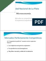 Micro 1 - Mercados No Competitivos (1)