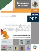 RER_Diarrea_Aguda.pdf