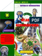 Atlasneuroanatomia 150626160003 Lva1 App6892