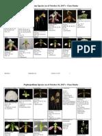 London Orchid Society Paphiopedilum Class List.