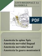 anestezia mandibula 2014