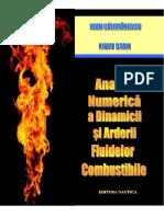 Curs - Gazodinamica, Analiza Numerica a Dinamicii Si Arderii Fludelor Combustibile
