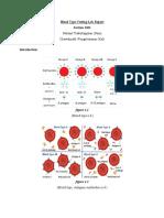 blood_type_testing_lab_report.pdf