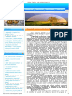 Melidava - Propolisul - Un Dar Multivalent Al Stupului (2)