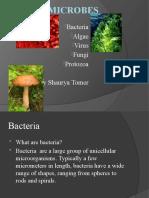 pranaymicrobes-090710132918-phpapp02