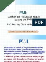 6 Introducc Al PMI