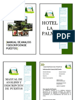 Manual de Analisis y Puestos