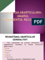 Curs Nr. 5 Umar Reumatism Abarticular