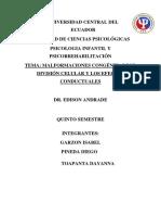 Malformaciones Congénitas Por División Celular y Los Efectos Conductuales