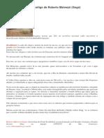 Hidrocídio Brasileiro, artigo de Roberto Malvezzi (Gogó).docx