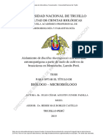 Padilla Mozo, Julio Cesar Agustin Junior