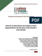 Informe-Final-Crudo-Pesado-16dic11.pdf