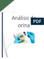 Analisis de Orina (Informe CER)