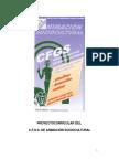 proyectocurricularanimacion.pdf