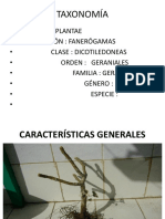 botánica geraniaceae