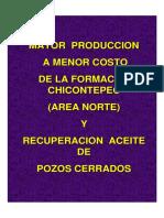 85567968-CHICONTEPEC