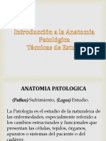 Introducción a la Anatomía Patológica.ppt