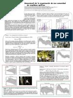 analisis tridimentsional epifitos panel