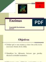 SDlab5.ppt