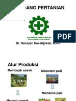 K3- pertanian.ppt