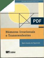 numeros irracionais e transcedentes - djairo.pdf