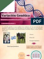 Variación Genética JESSICA RUÍZ