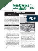 NRMC CIP 13p