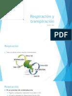 Biologia Vegetal 4 Respiración Transpiraciòn