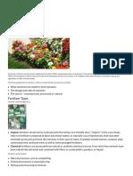 Fertilizer 101 _ Today's Homeowner