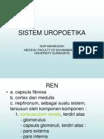 Sistem Uropoetikadr. Nur