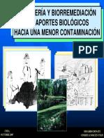 69438936-20071005-Biomineria-y-Biorremediacion-Donati.pdf