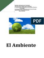 Informe Del Ambiente (2) DEIBI