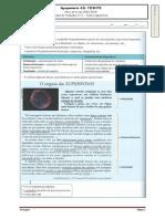 Ficha IT- Texto expositivo.docx