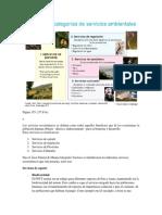 TOROTORO - BIOL.docx