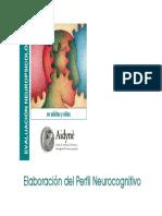 EVNPS-ElaboracionDelPerfilNeurocognitivo.pdf