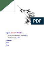 Programmeren Met JavaScript (1)