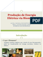 Produção de Energia Elétrica via Biomassa.pptx