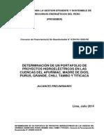 Determinacion Portafolio Hidroelectricas Peru