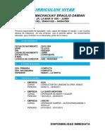 Curriculum Vitae de Braulio Paucar
