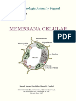 Atlas Celula 03 Membrana Celular