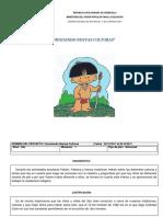 Resistencia Indigena Planificacion