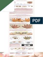 Reflexology Charts_ Hand, Foot & Ear Reflexology Chart Tips