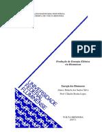 Produção de Energia Elétrica via Biomassas.pdf