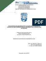 informe Blanco r Alejandra c