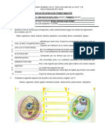 Examen de Recuperacion 1B Ciencias I