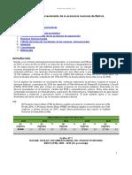 Desarrollo y Crecimiento Economia Nacional Bolivia