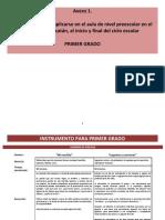 1.- Tutorial para la aplicacioìn de un instrumento en Preescolar.pdf